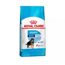 Ração Royal Canin 15kg Maxi Junior Cães Filhotes de Raças Grandes